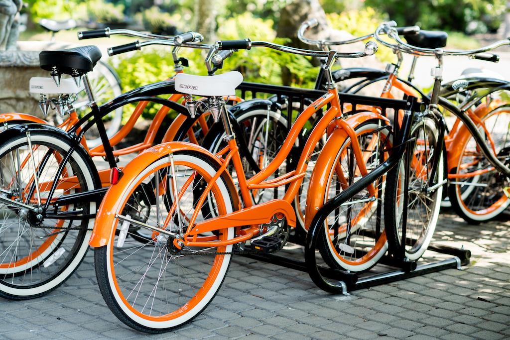 Profitez d'une balade en vélo !